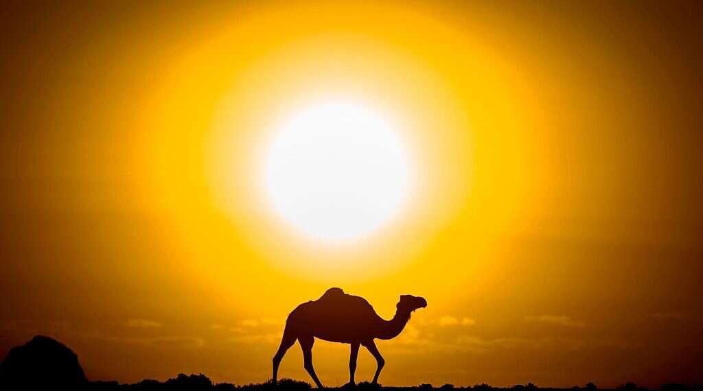 La justice absolue au Sahara peut être dangereuse