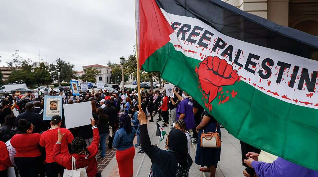 BDS lauds Black Lives Matter's solidarity with Palestinians amid Gaza conflict